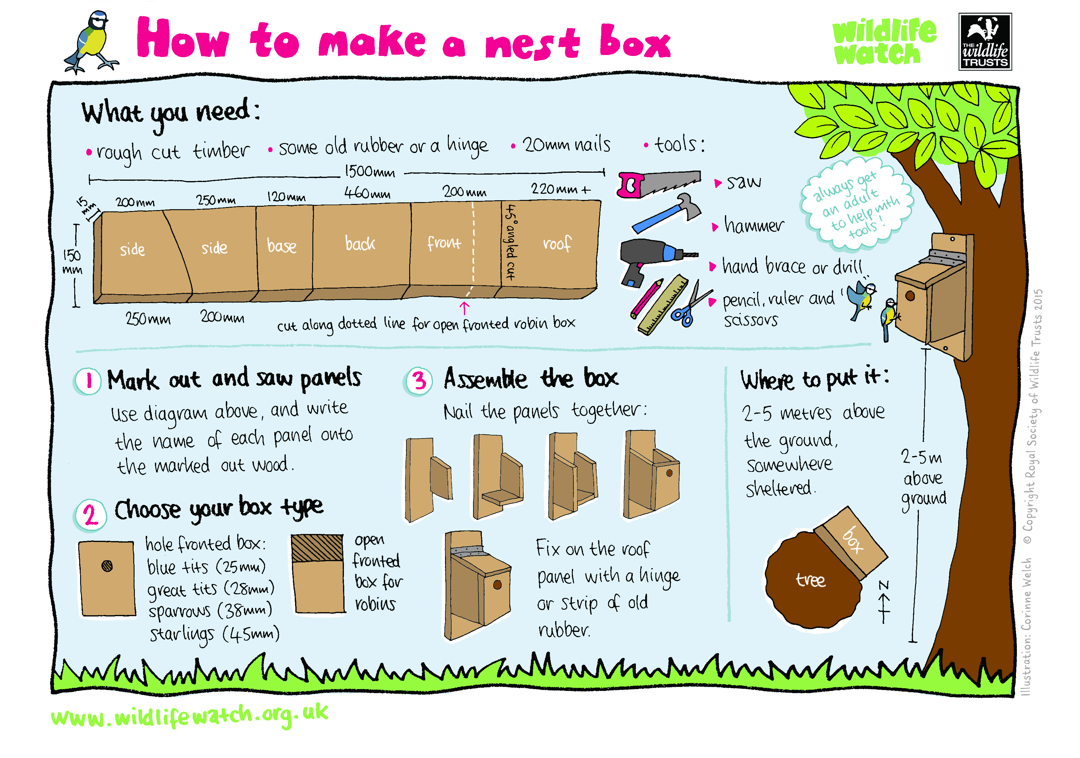 How to help wildlife surrey wildlife trust for How to build box steps