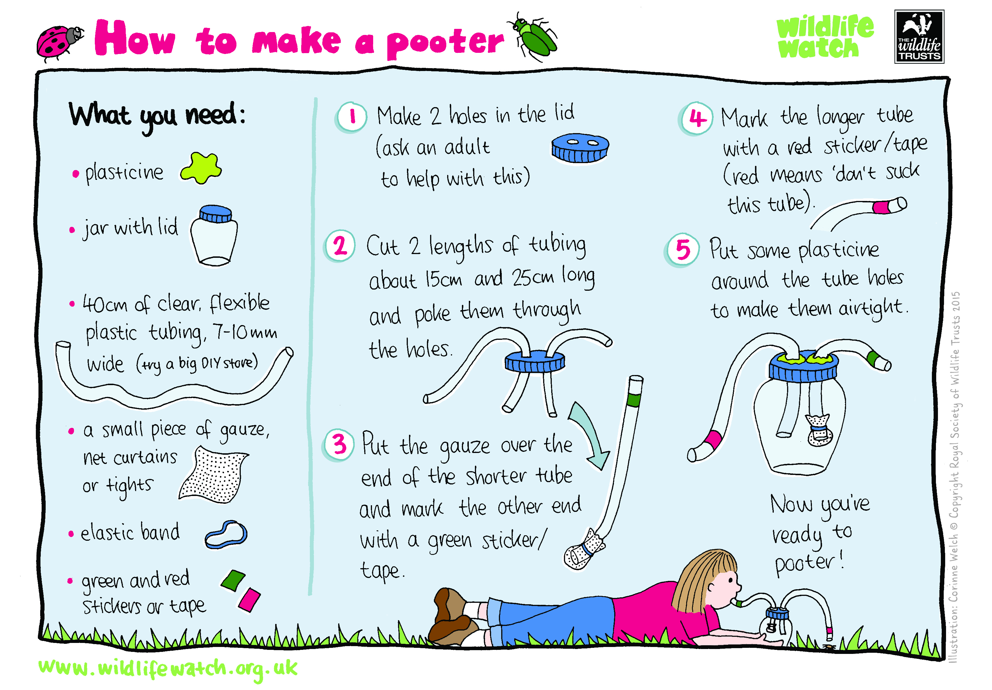 Wildlife Watch - Activity Sheets